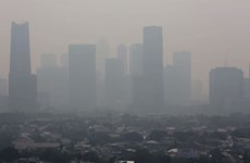 Jakarta's tax hike plan aims to reduce pollution