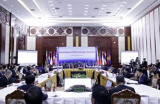 Press Statement by the Chairman of the ASEAN Coordinating Council