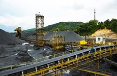 State-owned coal, oil producers urged to response to COVID-19