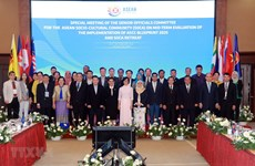 Vietnam chairs SOM for ASEAN Socio-Cultural Community