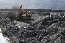 State-run mining firm to divest from Nghe An-based company