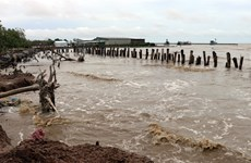 Mekong Delta grapples with erosion, subsidence