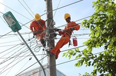 EVN produces one third of domestic electricity output