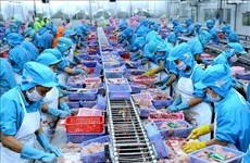 Vietnamese seafood exporters not too worried about COVID-19