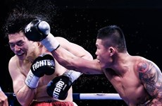 Vietnamese boxers punching above their weight