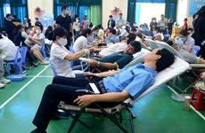 Da Nang workers join in blood donation programme