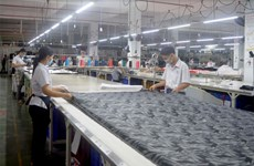 Dong Nai's major industries maintain high growth rate in February
