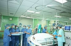 German businesses keen on Vietnam's healthcare sector