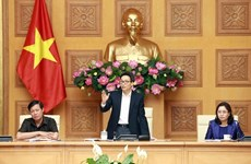 Vietnam temporarily suspends visa-free entry for Italians: Deputy PM