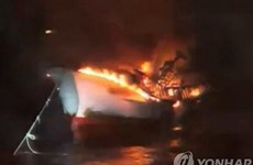 Embassy in RoK conducts citizen protection measures after fishing boat fire