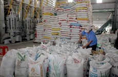 Rice export prices surge amid high demand