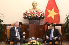Deputy PM Pham Binh Minh receives Russian deputy foreign minister