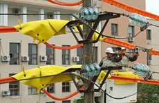 EVN works to ensure enough electricity during dry months