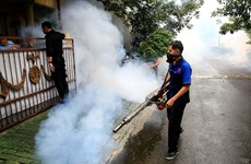 Indonesia grapples with dengue fever