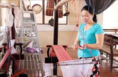 Ninh Thuan provides vocational training for rural workers