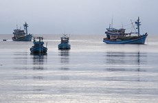 Ben Tre steps up installation of fishing vessel monitoring devices