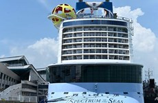 Cruise passenger traffic in Singapore down 52 percent