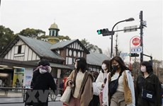 No Vietnamese students in Japan positive for SARS-CoV-2