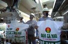 Major fertiliser producer's two-month profit fulfills 69 percent of yearly plan