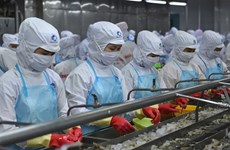 Pandemic has little impact on Vietnam's shrimp exports
