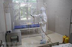 COVID-19 cases in Vietnam rise to 116