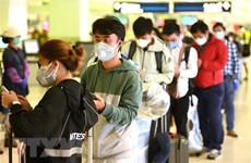 Foreign Ministry urges Vietnamese citizens abroad to refrain from travels