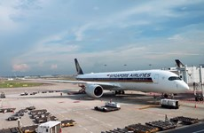 COVID-19 outbreak makes Singapore Airlines cut 96 percent of capacity