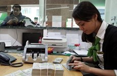 Vietnam has sufficient resources to stabilise forex market: State Bank