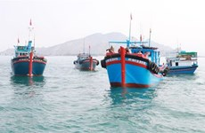 Ninh Thuan popularises Fisheries Law among fishermen to fight IUU fishing