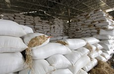 Cambodia calls on rice millers, exporters to buy paddy
