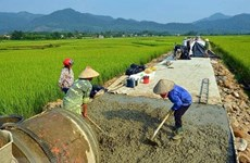 Over 720 billion VND for new-style rural area building in Hoa Binh