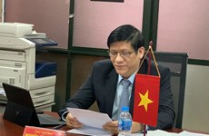 Vietnamese, Lao health officials discuss ways to fight COVID-19