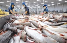 Tra fish exports to US, China rise in March