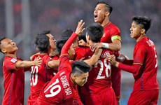 Vietnam national team in top 15 in Asia