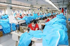 Mask, protective clothing exporters must meet EU standards: Authority