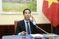 Vietnam, UK discuss ways to fight COVID-19, promote bilateral ties