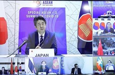 Japan hails significance of strengthening ASEAN+3 cooperation against COVID-19
