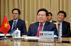 Vietnam proposes measures for COVID-19 fight at multilateral meeting