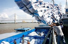 Inspection team set up to check rice volume stuck at ports