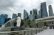 Singapore's COVID-19 cases surpass 10,000