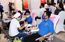 Ho Chi Minh City, Nghe An province organise blood donation day