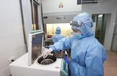 Vietnam sees no new COVID-19 infections on April 27 evening