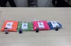 HCM City's customs seizes 18kg of ecstasy