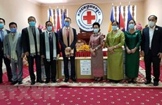 Vietnam Red Cross donates medical supplies to Cambodia