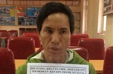 Drug trafficker arrested in Nghe An