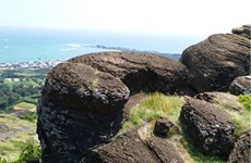 Volcanic rocks found on Phu Quy island