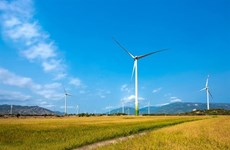 Wind power plant set to operate in Ninh Thuan