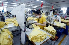 Number of newly-established firms in Vietnam down 13.2 pct in Jan-Apr