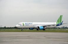 Bamboo Airways needs at least 40 aircraft for 2020 expansion plans