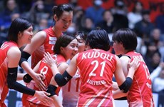 Vietnamese volleyball star to stay with Denso Airybee